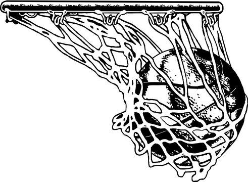 Basketball Net Vector Illustration