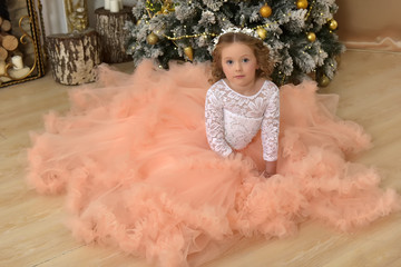 Beautiful young girl in a  ball gown