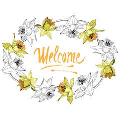 Vector Yellow Narcissus floral botanical flower. Engraved ink art. Frame border ornament square.