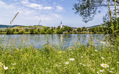 Minheim an der Mosel Rheinland-Pfalz Deutschland