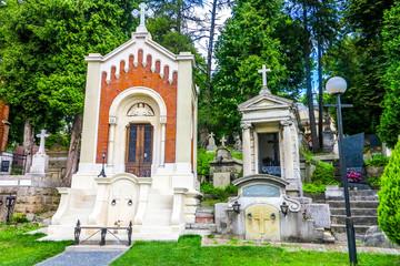 Lviv Lychakiv Cemetery 03