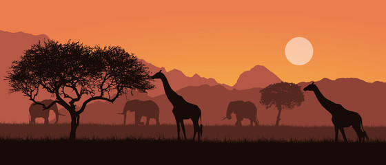 Realistic illustration of a mountain landscape on safari in Kenya, Africa. Giraffes and elephants with trees. Orange sky with sun, vector