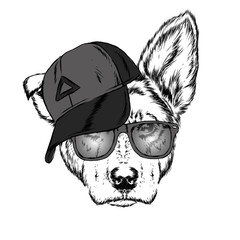 Cute Dog in cap and glasses. Vector illustration.