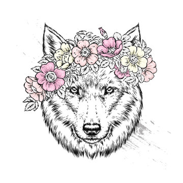 A beautiful wolf or dog in a wreath of wild rose. Vector illustration for postcard or poster, print for clothes. Spring and summer, a bouquet of flowers. Vintage and retro. Hipster