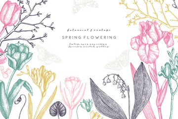 First spring flowers design.  Floral elements, buds, leaves drawings. Hand drawn botanical illustrations. Garden and forest plants sketches. Vector invitation or greeting card template.