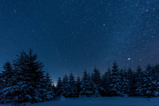 dark sky full of shiny stars in carpathian mountains in winter forest at night