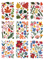 Collection of Floral Patterns Set, Colorful Spring or Summer Plants Vector Illustration
