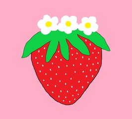 Red strawberry with white blossoms on pink background