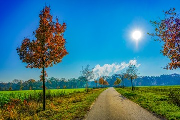 Landscape view of an wonderful road in the nature of Germany