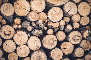 Pile of cut wooden logs