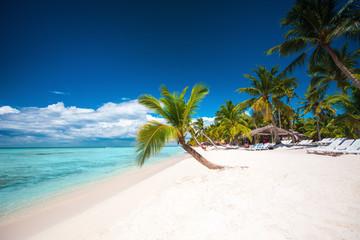 Palm trees on white sandy beach in Caribbean sea, Saona island. Dominican Republic.