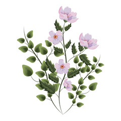 Wall Mural - Spring flowers with leaves