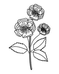 Wall Mural - Flower with leaves drawing