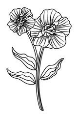 Flower with leaves drawing