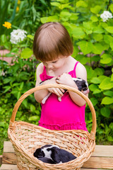 3-years-old girl holds in hands the Estonian Hound puppy and  looks intently to other puppies  in basket. Summertime in countryside.