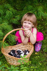 3-years-old girl sits with basket with Estonian Hound puppies under pine tree. Summertime in countryside.