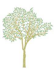 Eucalyptus tree design
