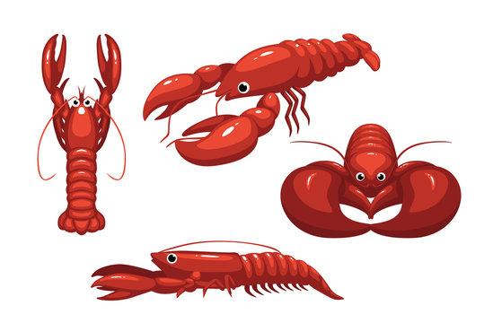 Cute Lobster Poses Cartoon Vector Illustration