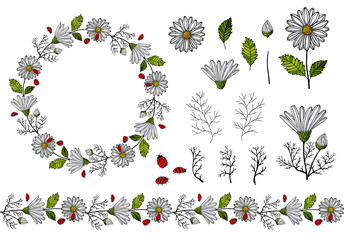 A lot of isolated objects summer daisies and ladybugs. Good for your postcard design, flyers, packaging, easy to use, all items separately. Vector set, Collection, set of objects, symbols