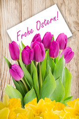 Tulips and German Happy Easter