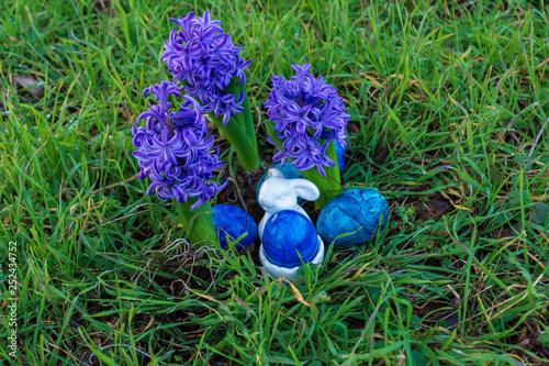 Blaue Hyazinthen Und Blaue Eier Zu Ostern Stock Photo And Royalty
