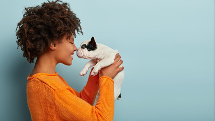 Sideways shot of pleased charming young woman has dark skin, curly hairstyle, touches noses with favourite dog, plays with french bulldog, dressed in orange jumper, isolated over blue background