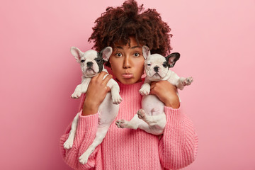 Sad surprised Afro American woman with small sized dogs, upset after vets visit, finds out about some health problems, wears oversized jumper, isolated over pink background, plays with puppies