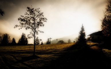 Image of silhouettes of ski lift and trees during sunrise in the early morning