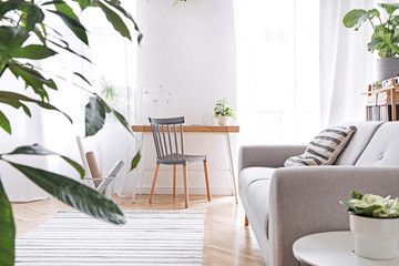 Modern scandinavian living room with design furniture, grey sofa, plants, bamboo bookstand and wooden desk. Brown wooden parquet. Nice apartment. Stylish decor. Bright and sunny side of home space.