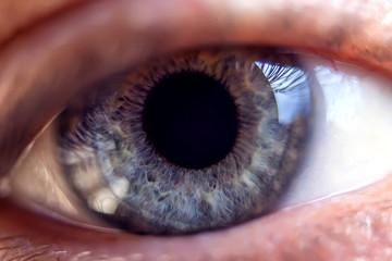 Macro image of human blue eye, close-up details