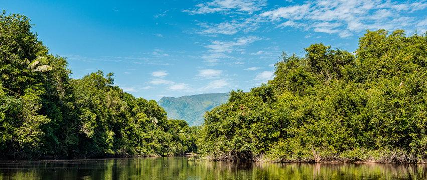 Beautiful sunny day  in the Amazonia Basin river. Corocoro river goes along Yutaje Community whicth mean in the native language:  River Foam (Espuma del Rio)