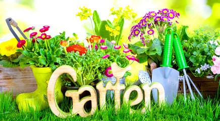 Garten Hintergrund Banner Panorama
