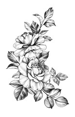 Hand drawn Composition with Roses and Leaves
