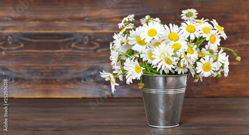 Mothers Day flowers. Daisies in the bucket on wooden background
