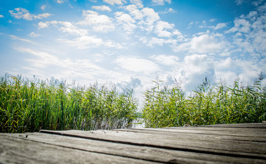 Landscape with an old wooden platform with a view of the reeds against the blue sky on a clear sunny day.