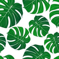 Abstract seamless pattern with green tropical monstera leaves. Vector element for design.