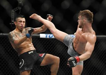 MMA: UFC 235-Stamann vs Perez