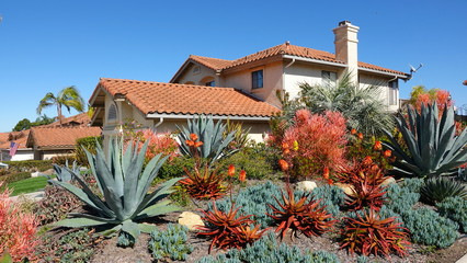Drought tolerant landscaping Wall mural
