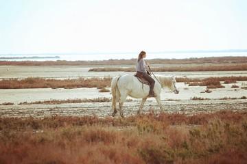 Balade en cheval en camargue, france