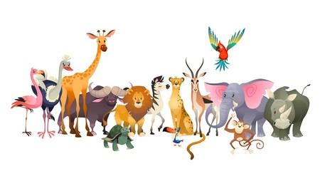Wild animals. Safari wildlife africa happy animal lion zebra elephant rhino parrot giraffe ostrich flamingo cute jungle