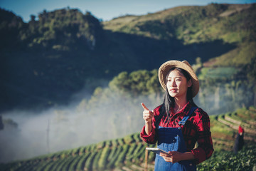Asian women relax in the holiday. Stand photograph selfie In the Strawberry Farm. Mountain Park happily. In thailand