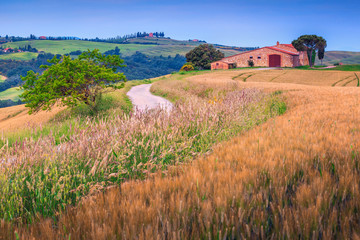 Summer grain fields and stone farmhouse in Tuscany, Italy, Europe