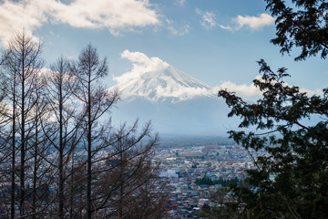 Fuji from the forest on blue sky background with autumn foliage at daytime in Fujikawaguchiko  Japan