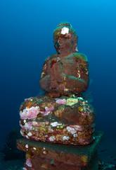 Amazing underwater world - artificial reefs. Tulamben, Bali, Indonesia.