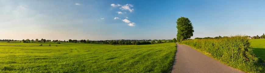 Northern Eifel Meadow Landscape, Germany