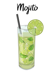 Mojito cocktail, with lime decorations, straw and mint. Hand drawn. Isolated image. Vector illustration.