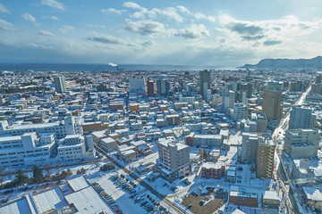Beautiful cityscape scenic of Hakodate city from Goryokaku tower in Hokkaido, Japan.
