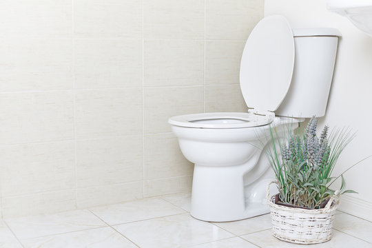 White water closet toilet