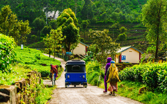 View on red Tuk Tuk on the way to tea plantation in Haputale, Sri Lanka