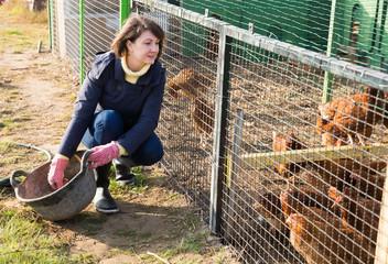 Girl farmer caring for poultry